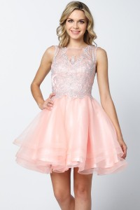 Embroidered Top Tulle Skirt Homecoming Dress.