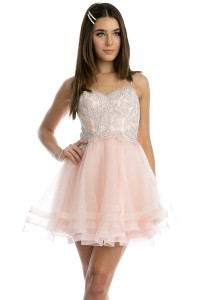 Embroidered Bodice Layered Skirt Homecoming Dress