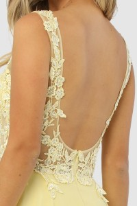 Embroidery Embellished Illusion Top A Line Dress
